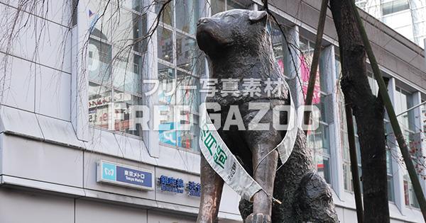 渋谷忠犬ハチ公像