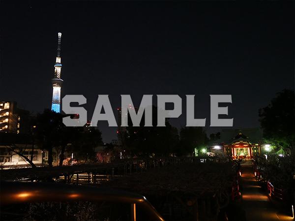 東京スカイツリー 夜景 1