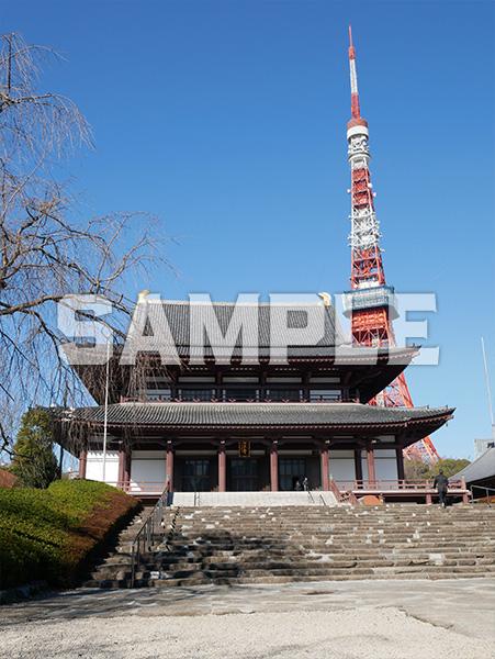 東京タワーと増上寺 1