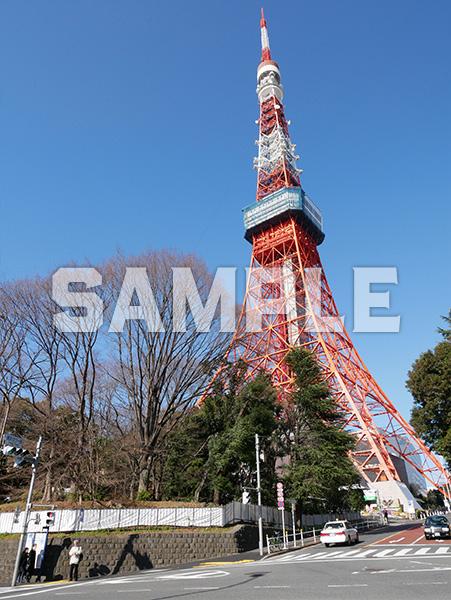 東京タワー 1