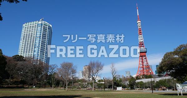芝公園から見える東京タワー 1