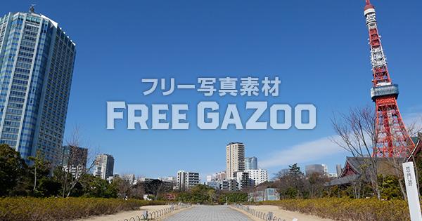 芝公園から見える東京タワー 3