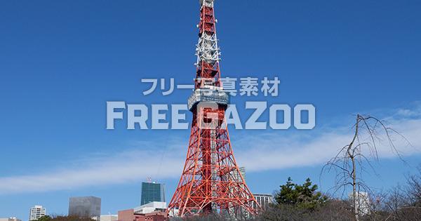芝公園から見える東京タワー 2