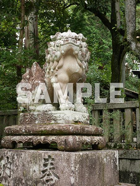 京都 岡崎神社の狛犬 2