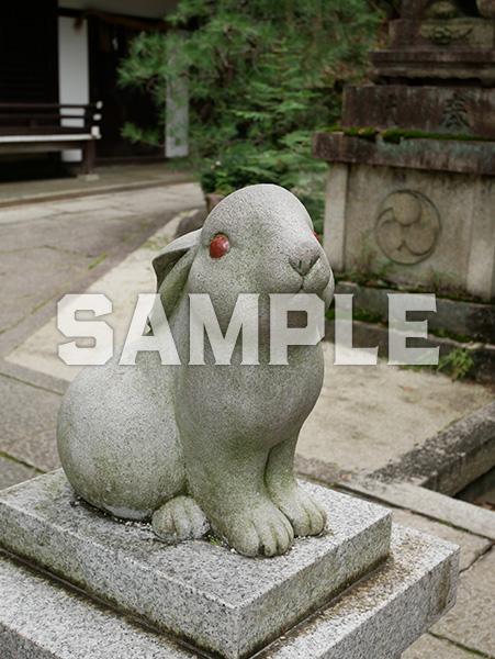 京都 岡崎神社の狛うさぎ 2
