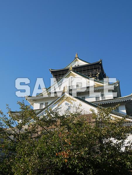大阪城天守閣 1