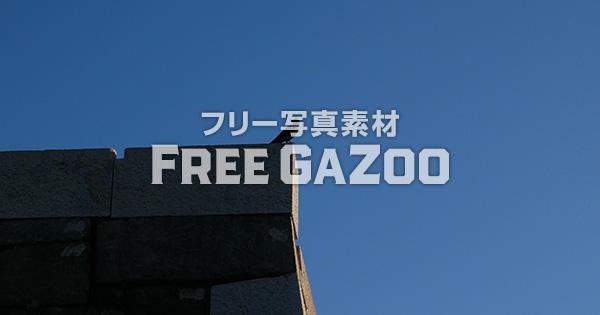 大阪城の石垣にカラス