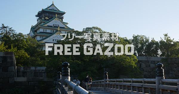 大阪城天守閣を極楽橋から望む 2