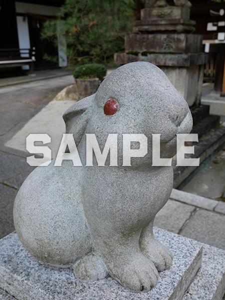 京都 岡崎神社の狛うさぎ