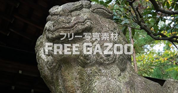 京都 岡崎神社の狛犬