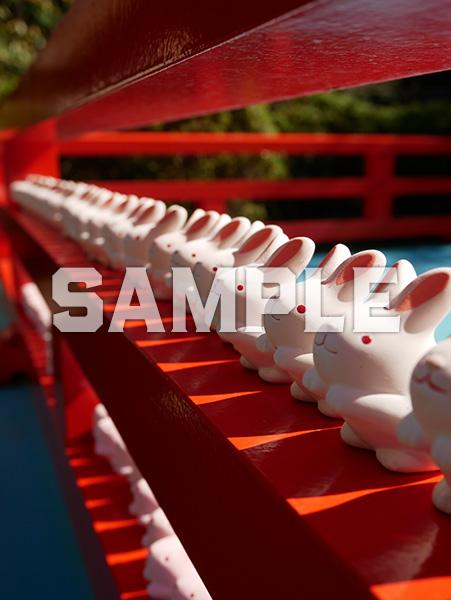 京都 岡崎神社のうさぎの置物 1