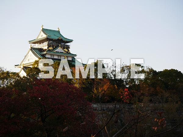 夕日に照らされる大阪城天守閣